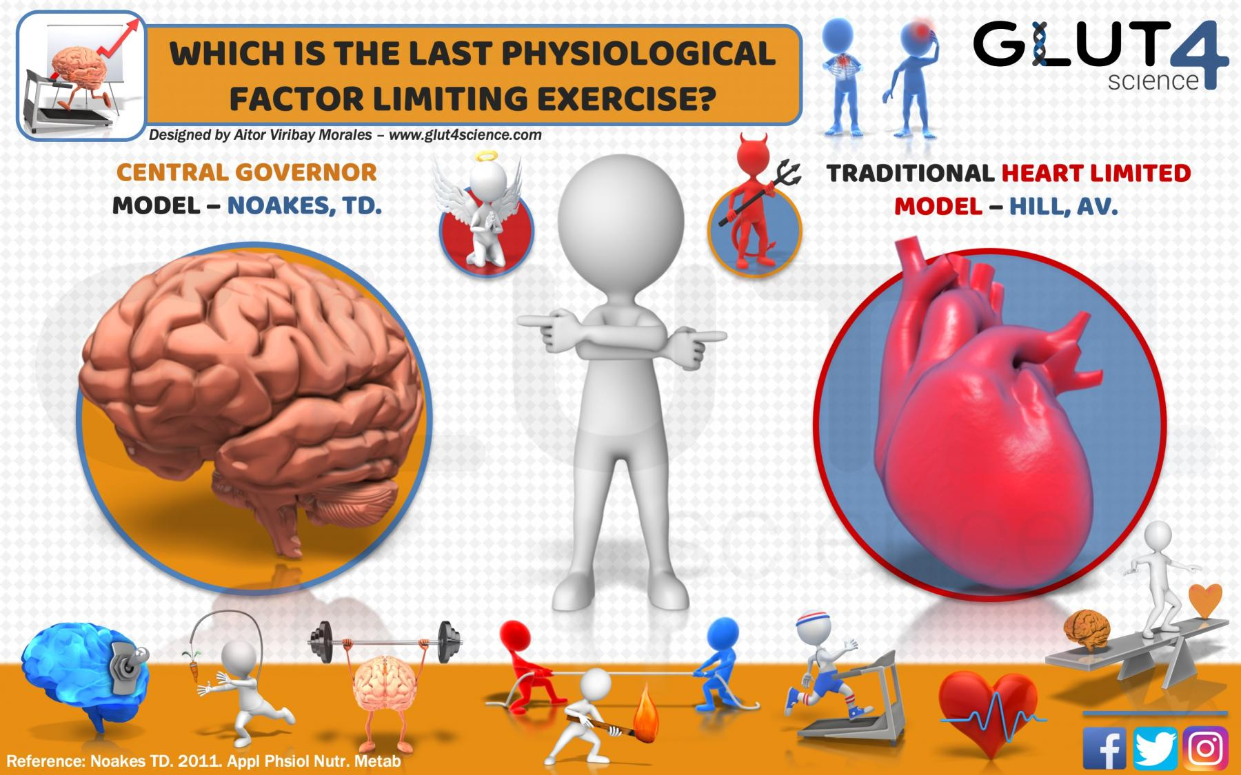 Which is the last physiological exercise-limiting factor?