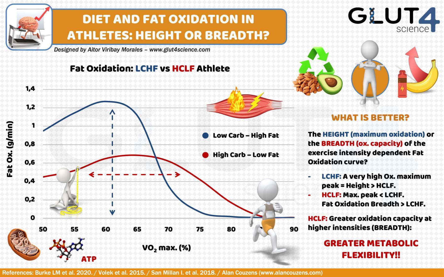 Gantzen oxidazioa kirolarietan: Dieta Low Carb eta High Fat
