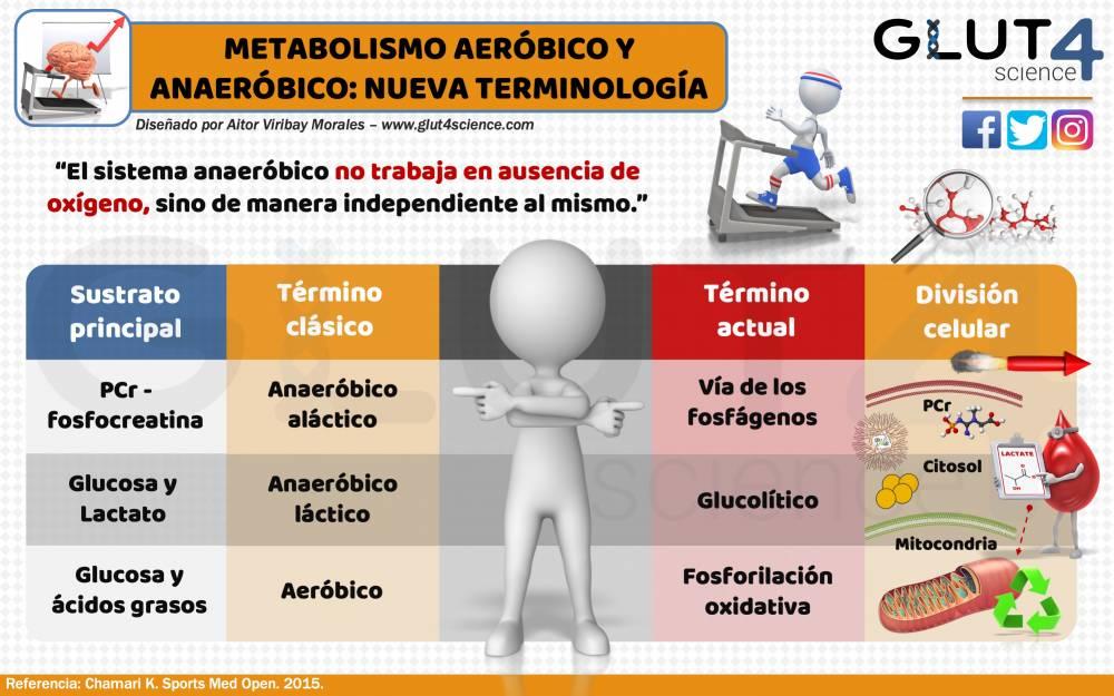 Aeróbico y Anaeróbico en Fisiología del Ejercicio: Nueva..