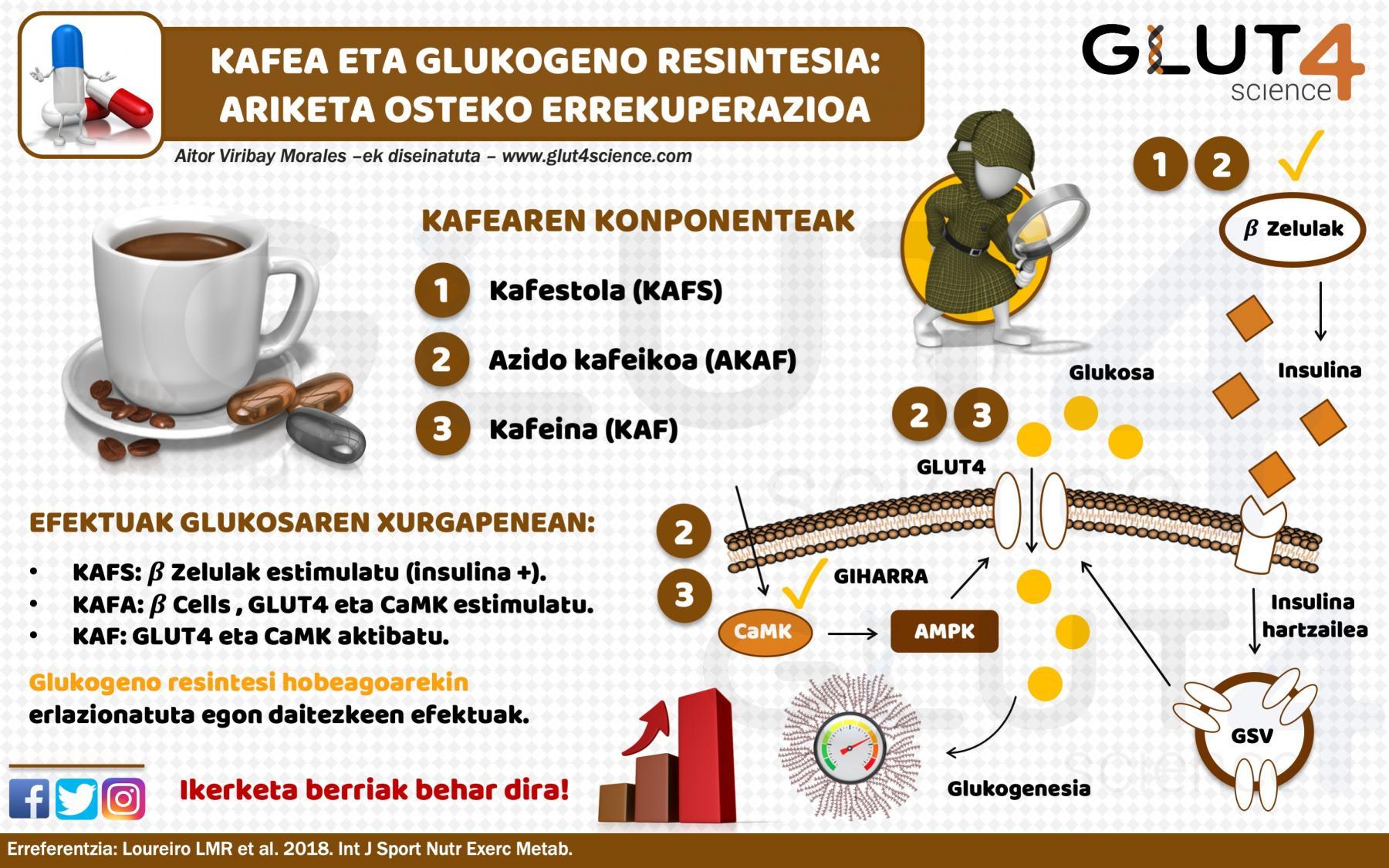 Kafea eta glukogeno resintesia