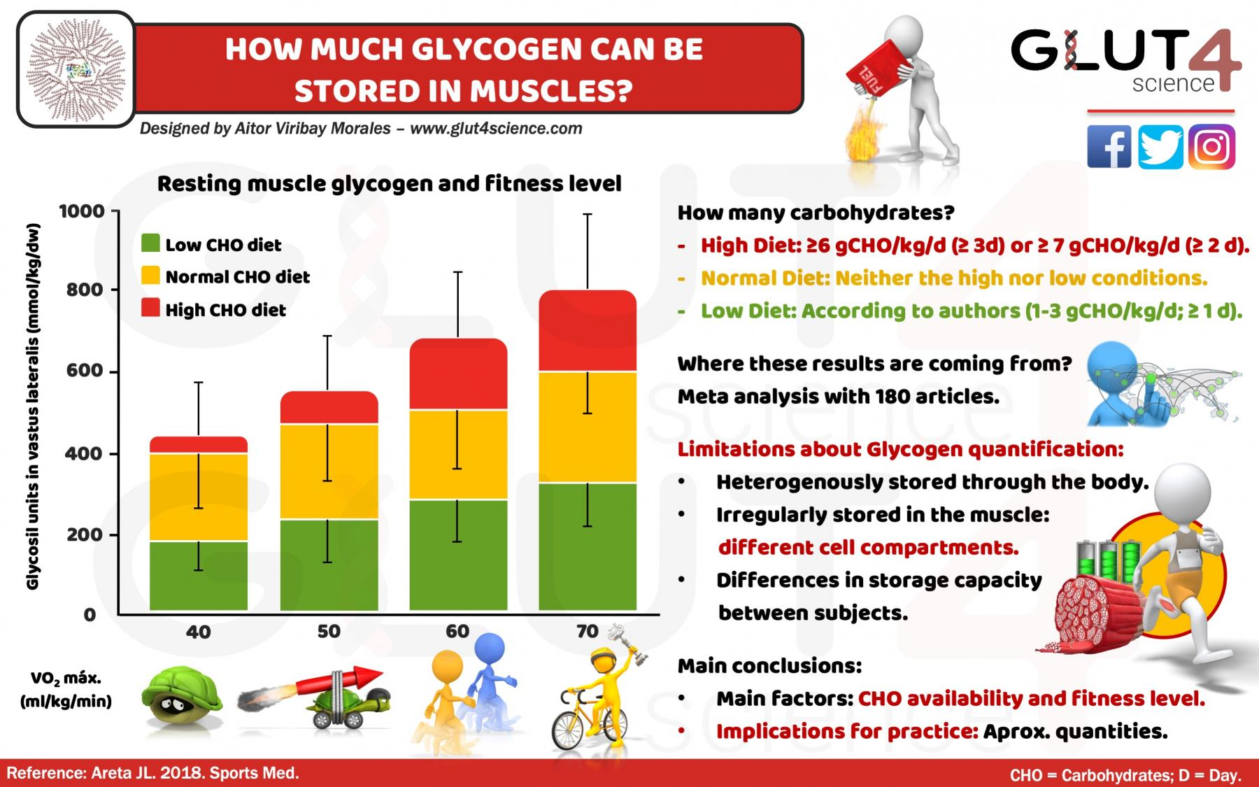 How much glycogen can be stored in muscles?