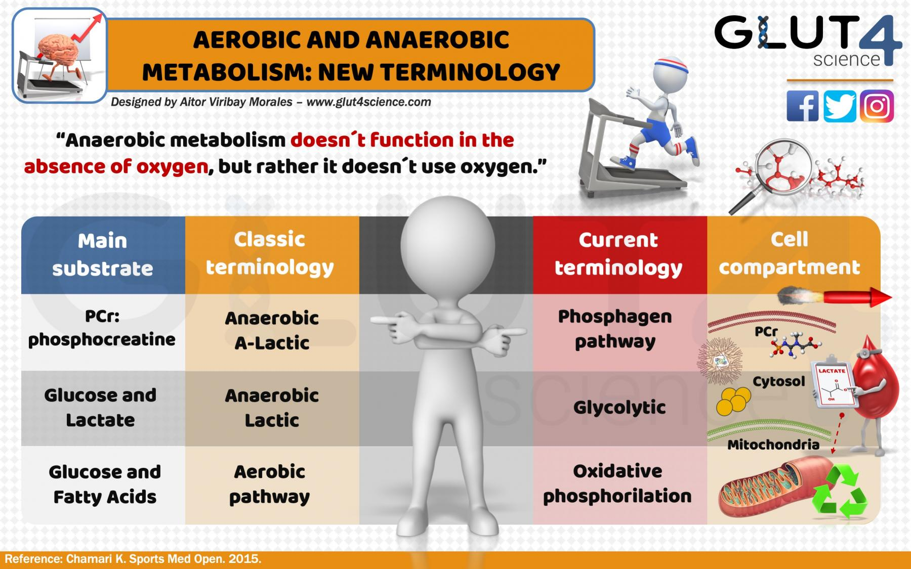 Aerobic and anaerobic: new terminology