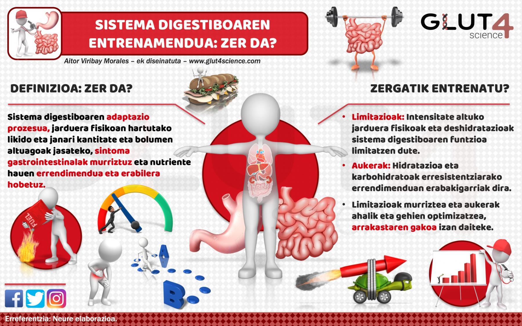 Sistema digestiboaren entrenamendua - zer da?